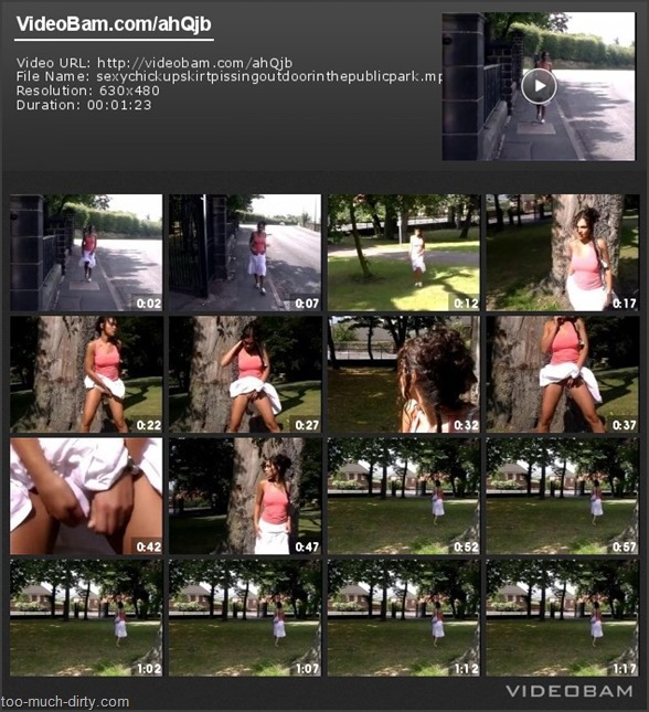Sexy_Chick_Up-Skirt_Pissing_Outdoor_in_the_Public_Park_1